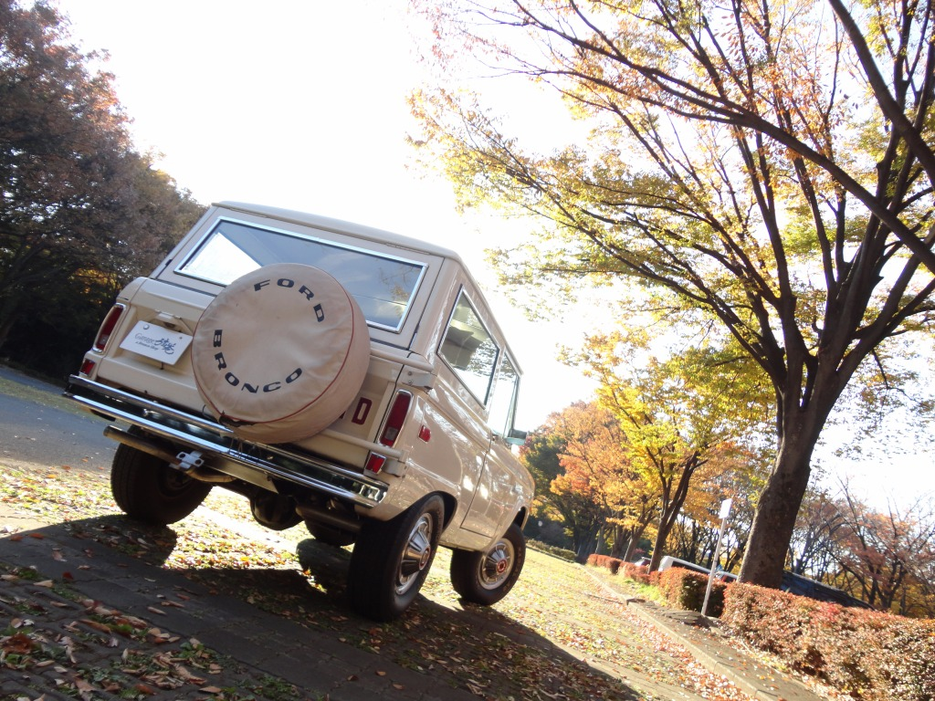1973 Bronco Ranger