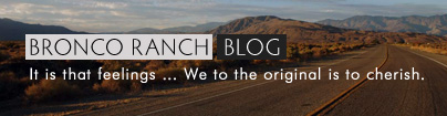 BRONCO RANCH BLOG